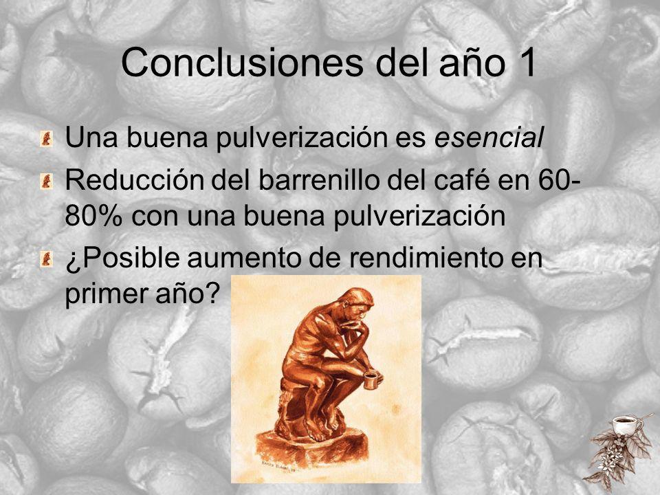 Conclusiones del año 1 Una buena pulverización es esencial Reducción del barrenillo del café en 60- 80% con una buena pulverización ¿Posible aumento d