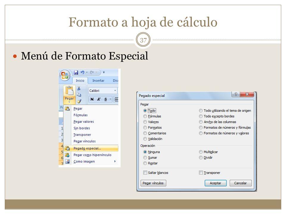 Formato a hoja de cálculo Menú de Formato Especial 37
