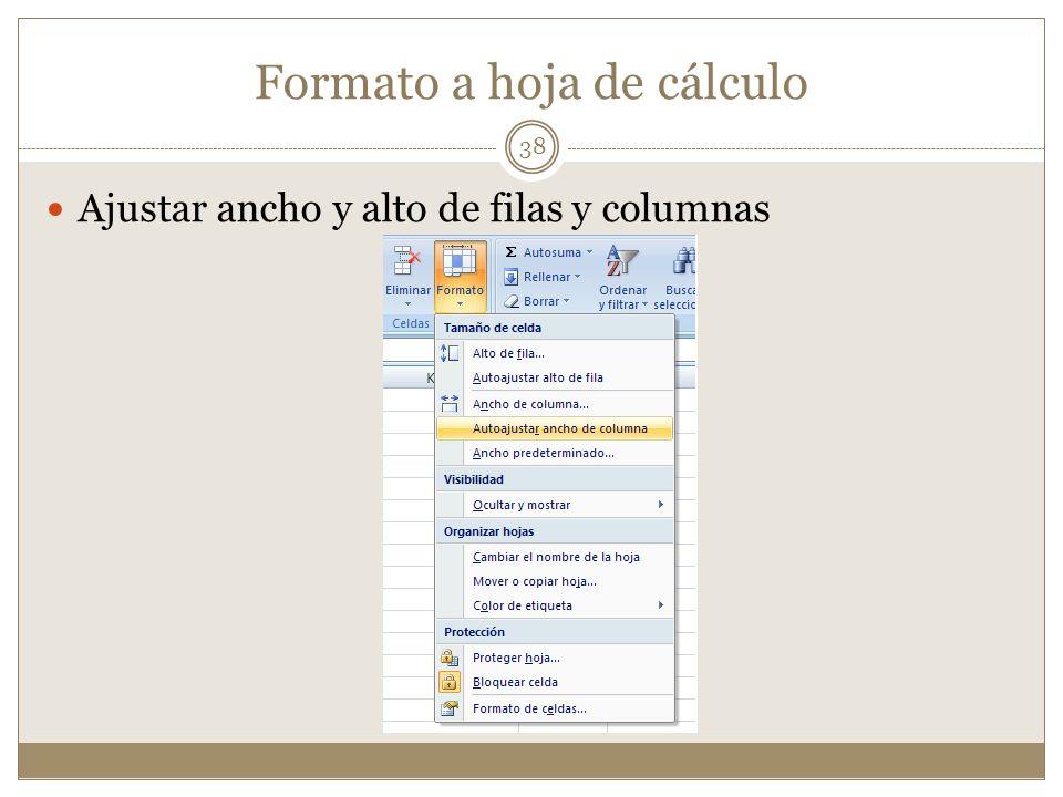 Formato a hoja de cálculo Ajustar ancho y alto de filas y columnas 38