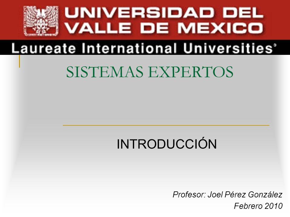 SISTEMAS EXPERTOS INTRODUCCIÓN Profesor: Joel Pérez González Febrero 2010