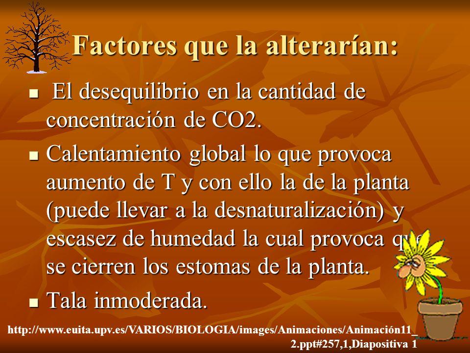 Factores que la alterarían: El desequilibrio en la cantidad de concentración de CO2. El desequilibrio en la cantidad de concentración de CO2. Calentam