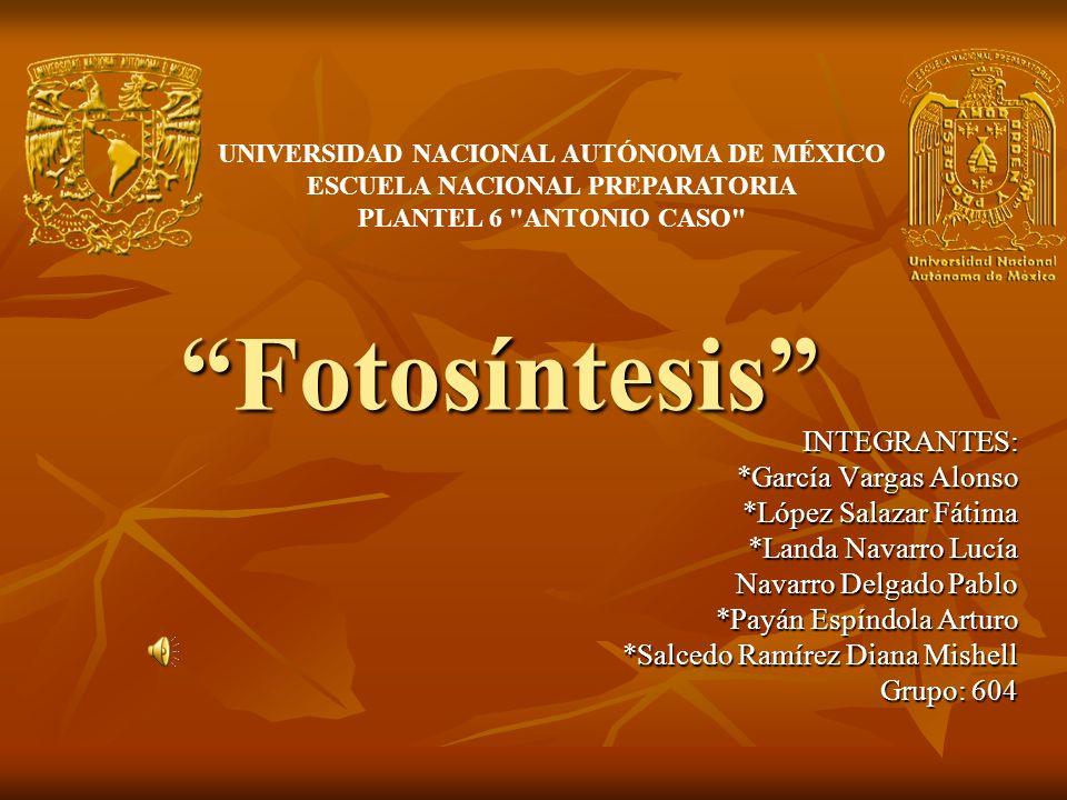 Fotosíntesis INTEGRANTES: *García Vargas Alonso *López Salazar Fátima *Landa Navarro Lucía Navarro Delgado Pablo *Payán Espíndola Arturo *Salcedo Ramí