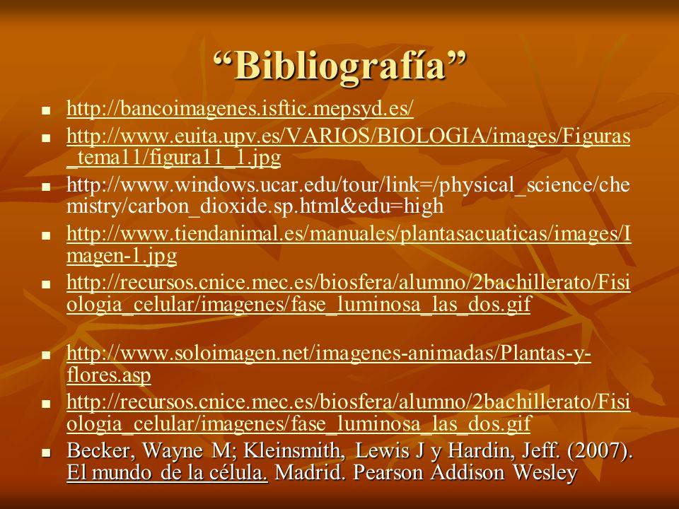 Bibliografía http://bancoimagenes.isftic.mepsyd.es/ http://www.euita.upv.es/VARIOS/BIOLOGIA/images/Figuras _tema11/figura11_1.jpg http://www.euita.upv
