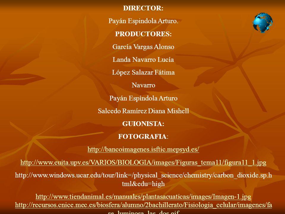 DIRECTOR: Payán Espindola Arturo. PRODUCTORES: García Vargas Alonso Landa Navarro Lucía López Salazar Fátima Navarro Payán Espíndola Arturo Salcedo Ra