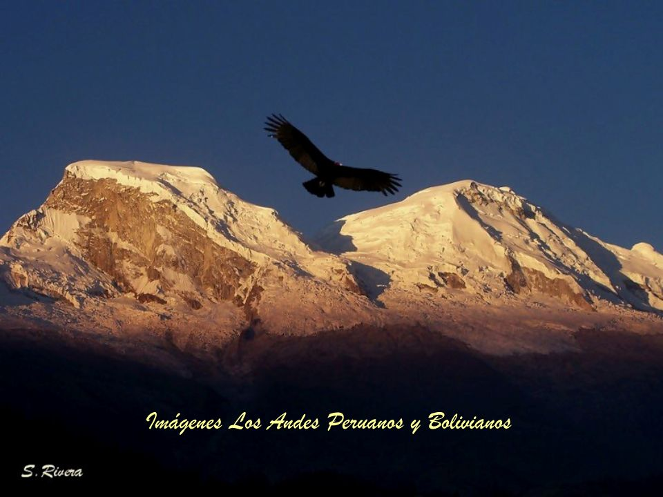 Imágenes Los Andes Peruanos y Bolivianos