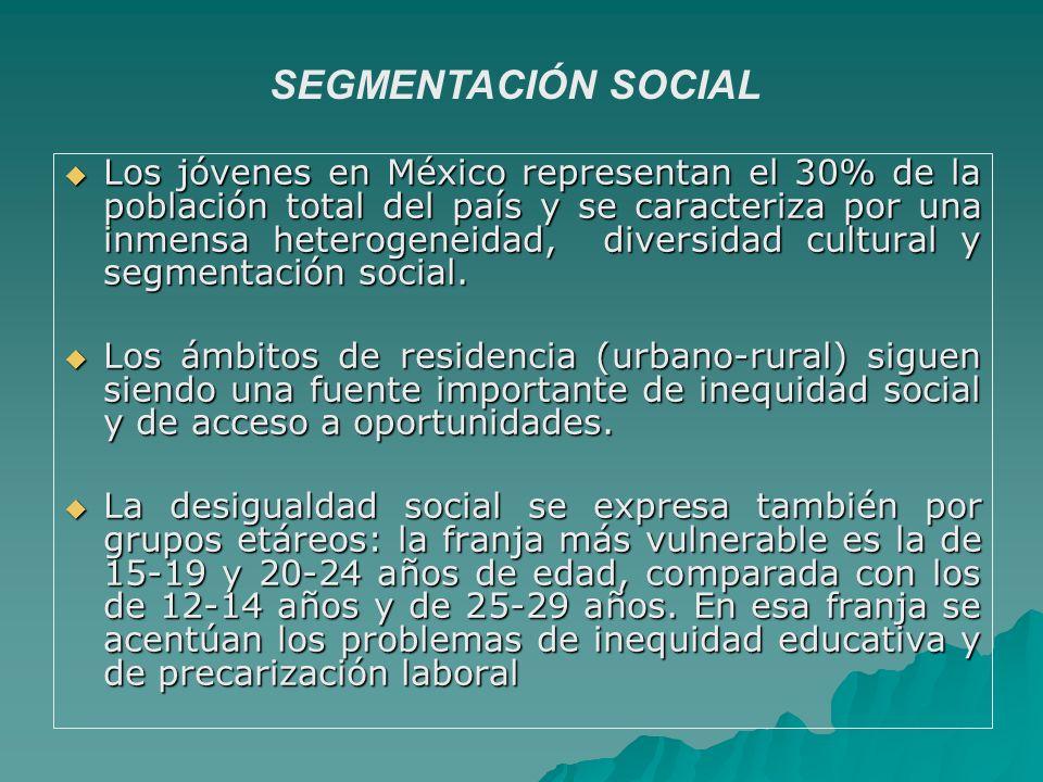 Los jóvenes en México representan el 30% de la población total del país y se caracteriza por una inmensa heterogeneidad, diversidad cultural y segment