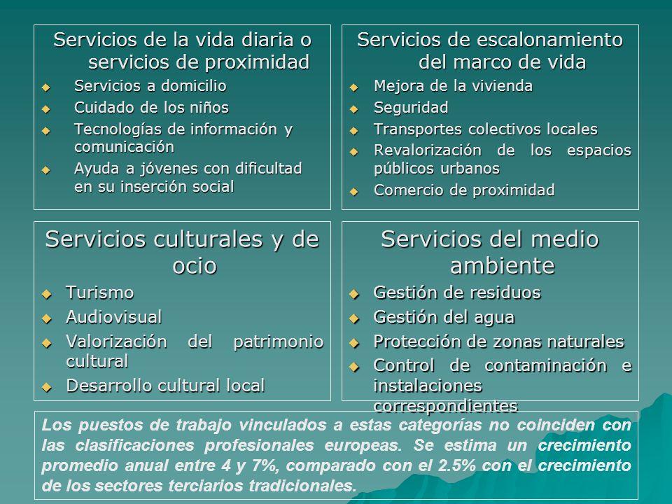 Servicios de la vida diaria o servicios de proximidad Servicios a domicilio Servicios a domicilio Cuidado de los niños Cuidado de los niños Tecnología