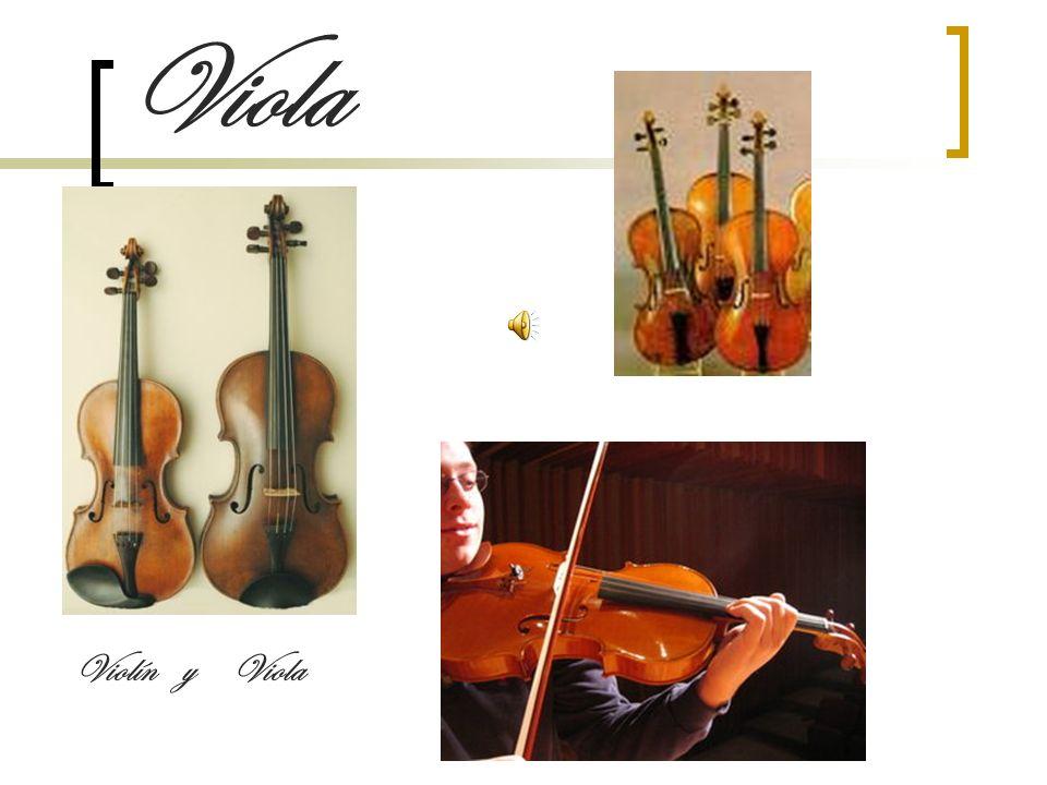 Viola Violín y Viola