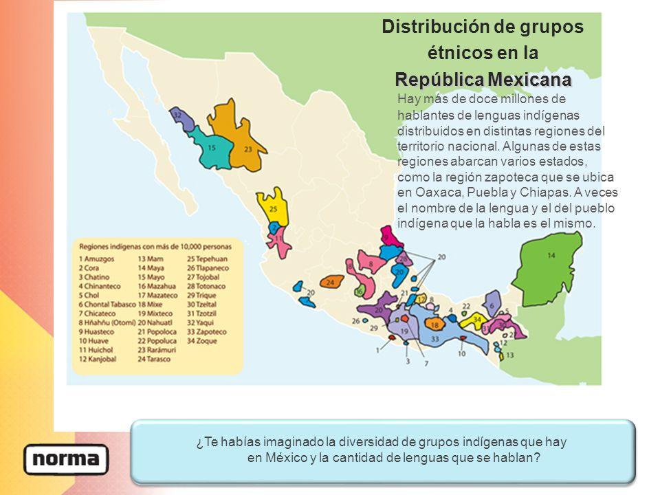 Hay más de doce millones de hablantes de lenguas indígenas distribuidos en distintas regiones del territorio nacional.