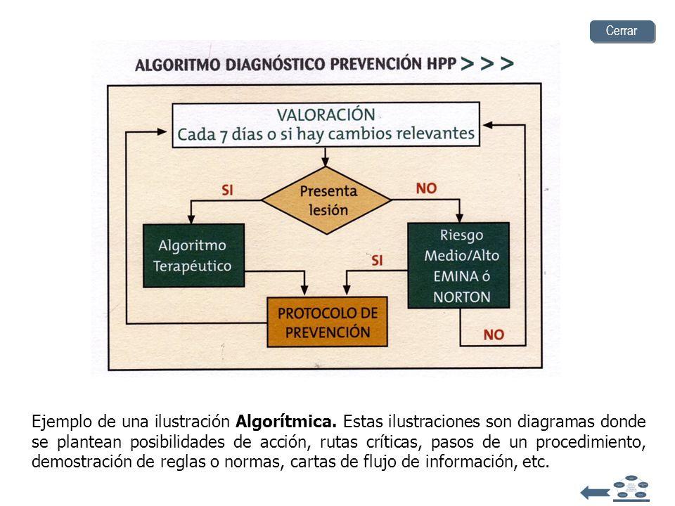Diseñe una presentación didáctica (imágenes) Lógico Matemática Algorítmica Arreglo de datos DescriptivasExpresivaConstruccional Funcional Tipo de Ilus