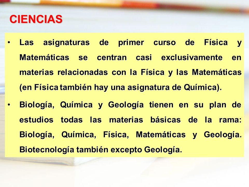 Las asignaturas de primer curso de Física y Matemáticas se centran casi exclusivamente en materias relacionadas con la Física y las Matemáticas (en Fí