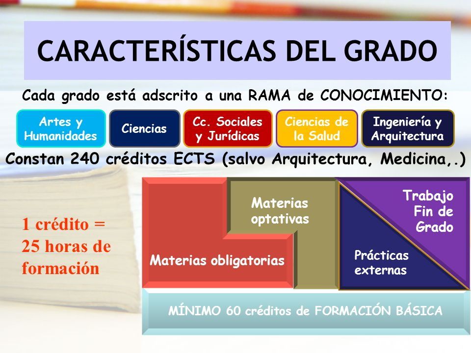 CARACTERÍSTICAS DEL GRADO Cada grado está adscrito a una RAMA de CONOCIMIENTO: Artes y Humanidades Ciencias Cc. Sociales y Jurídicas Ciencias de la Sa