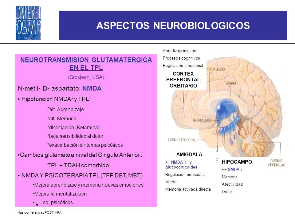 4as conferencias POST-APA NEUROTRANSMISION GLUTAMATERGICA EN EL TPL (Grosjean, USA) N-metil- D- aspartato: NMDA Hipofunción NMDAr y TPL: * alt. Aprend