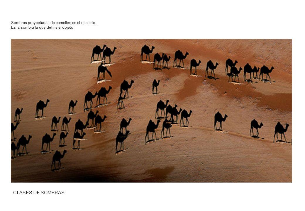 CLASES DE SOMBRAS Sombras proyectadas de camellos en el desierto… Es la sombra la que define el objeto