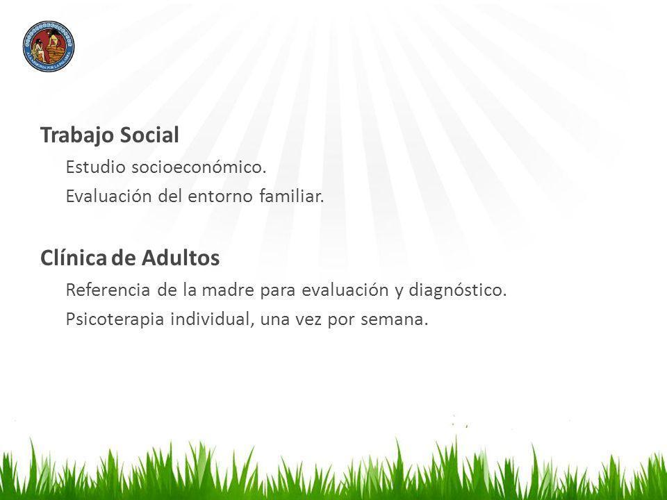 Trabajo Social Estudio socioeconómico. Evaluación del entorno familiar. Clínica de Adultos Referencia de la madre para evaluación y diagnóstico. Psico