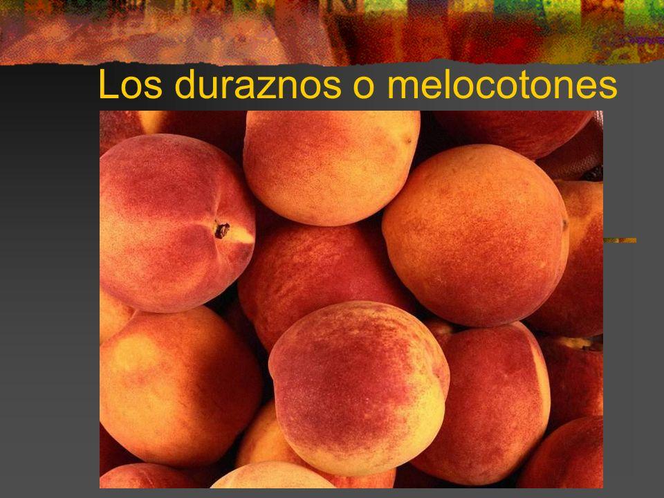 Los duraznos o melocotones