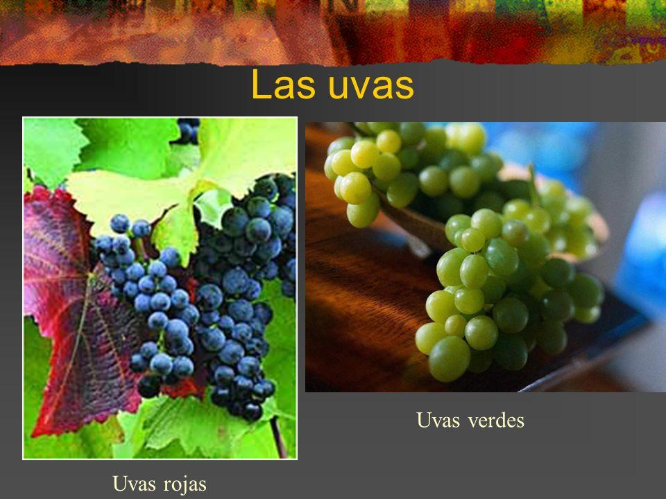 Las uvas Uvas rojas Uvas verdes