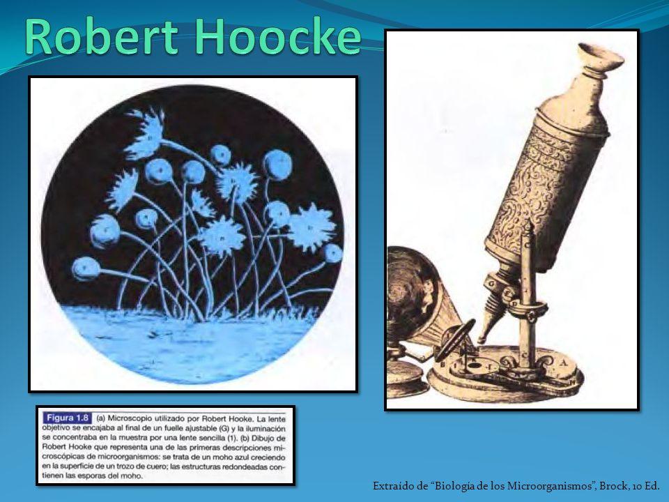 Extraído de Biología de los Microorganismos, Brock, 10 Ed.