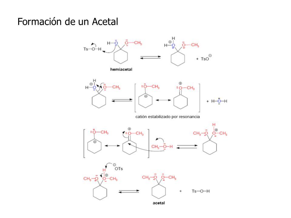 Formación de un Acetal