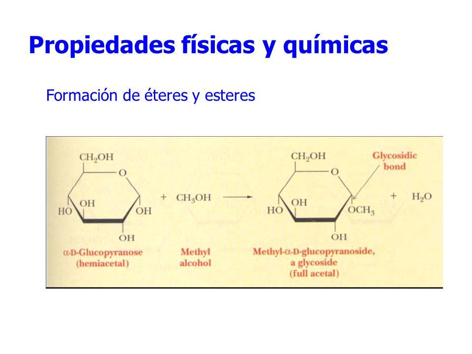 Propiedades físicas y químicas Formación de éteres y esteres