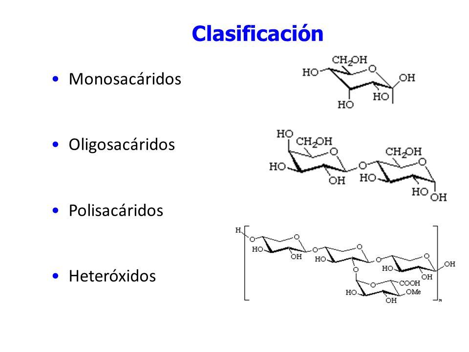 Monosacáridos Configuraciones de los monosacáridos Proyección de Fischer del D-gliceraldehído.