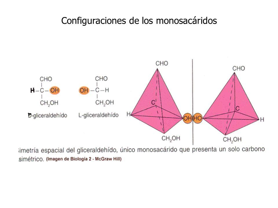 Enantiómeros Imágenes especulares