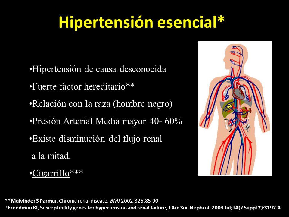 Hipertensión esencial* Hipertensión de causa desconocida Fuerte factor hereditario** Relación con la raza (hombre negro) Presión Arterial Media mayor 40- 60% Existe disminución del flujo renal a la mitad.
