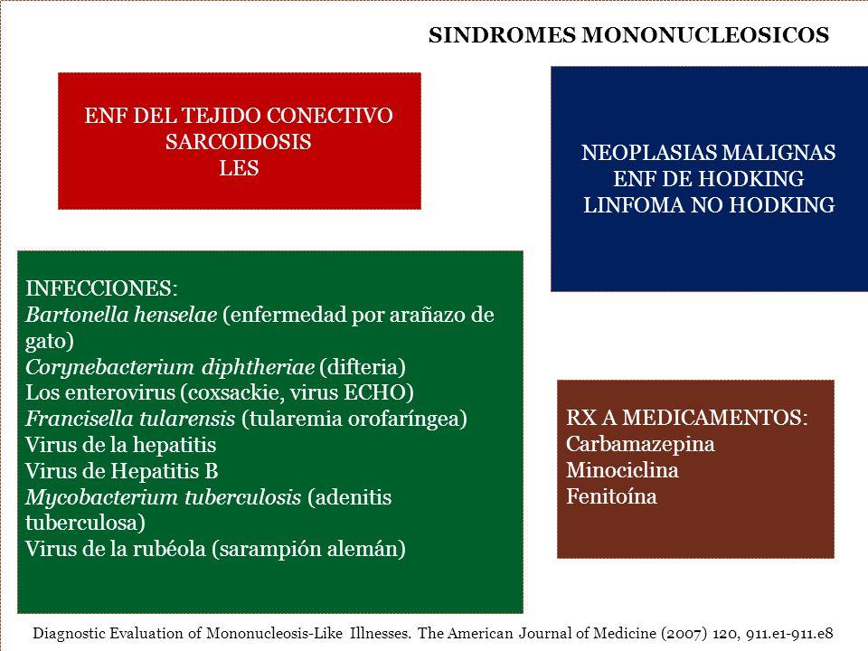 SINDROMES MONONUCLEOSICOS ENF DEL TEJIDO CONECTIVO SARCOIDOSIS LES NEOPLASIAS MALIGNAS ENF DE HODKING LINFOMA NO HODKING INFECCIONES: Bartonella hense