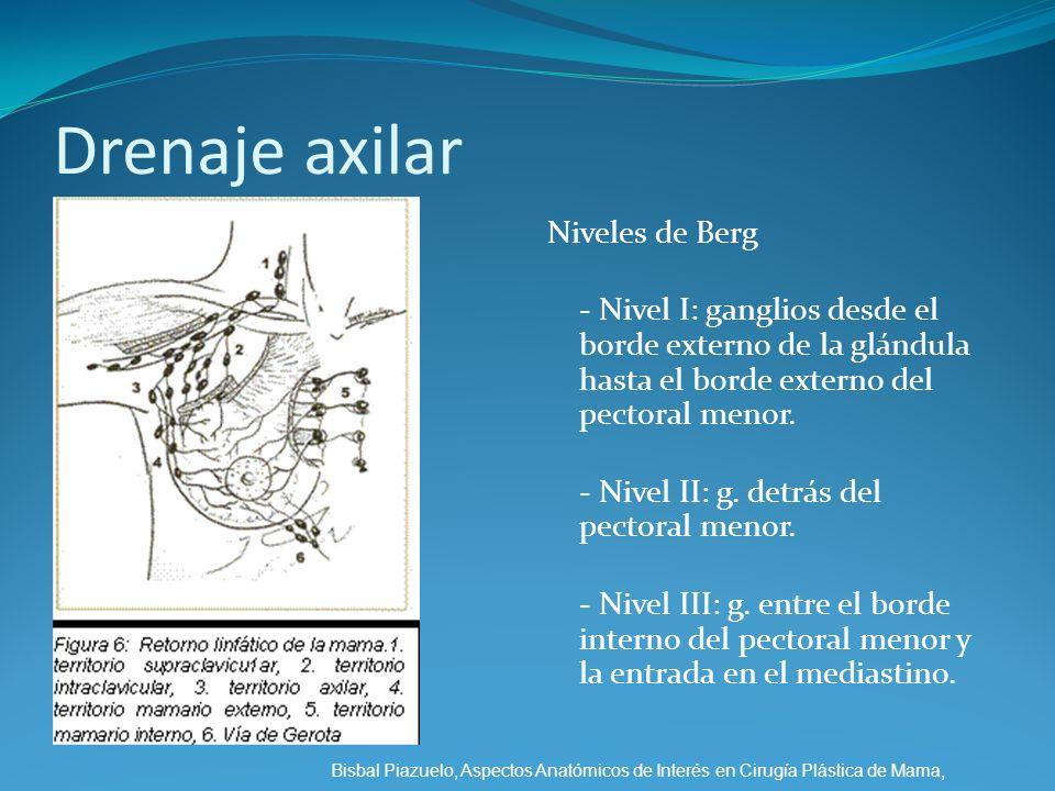 Drenaje axilar Niveles de Berg - Nivel I: ganglios desde el borde externo de la glándula hasta el borde externo del pectoral menor. - Nivel II: g. det