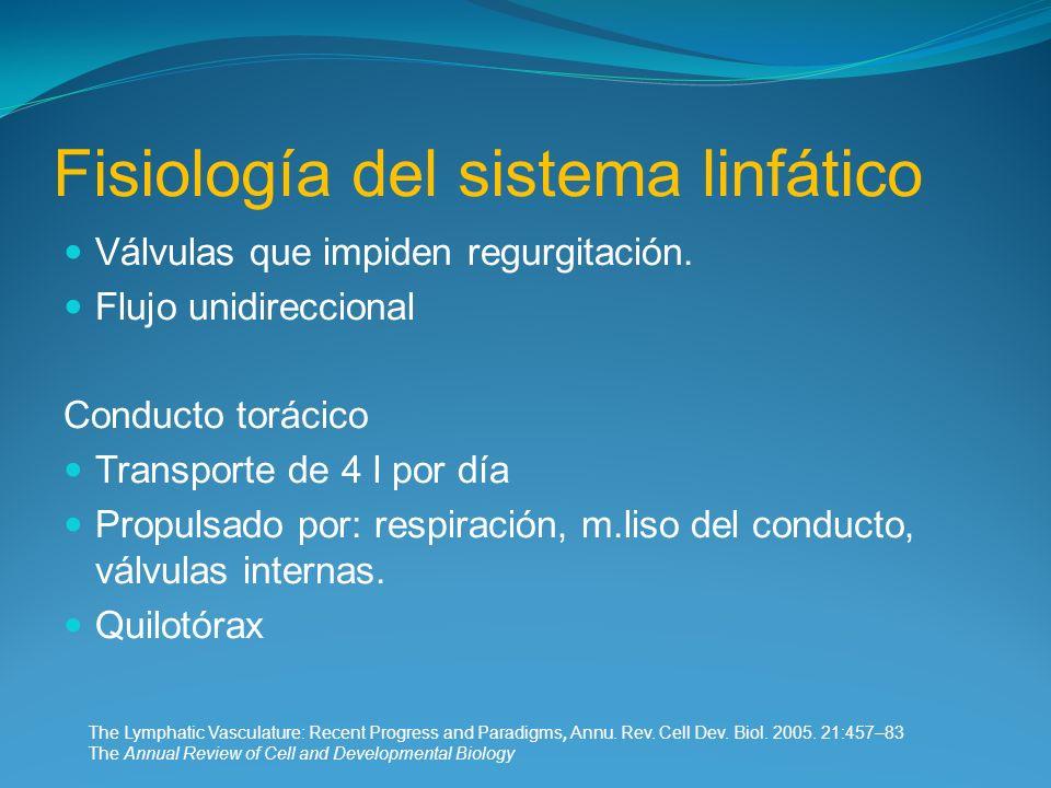 Fisiología del sistema linfático Válvulas que impiden regurgitación. Flujo unidireccional Conducto torácico Transporte de 4 l por día Propulsado por: