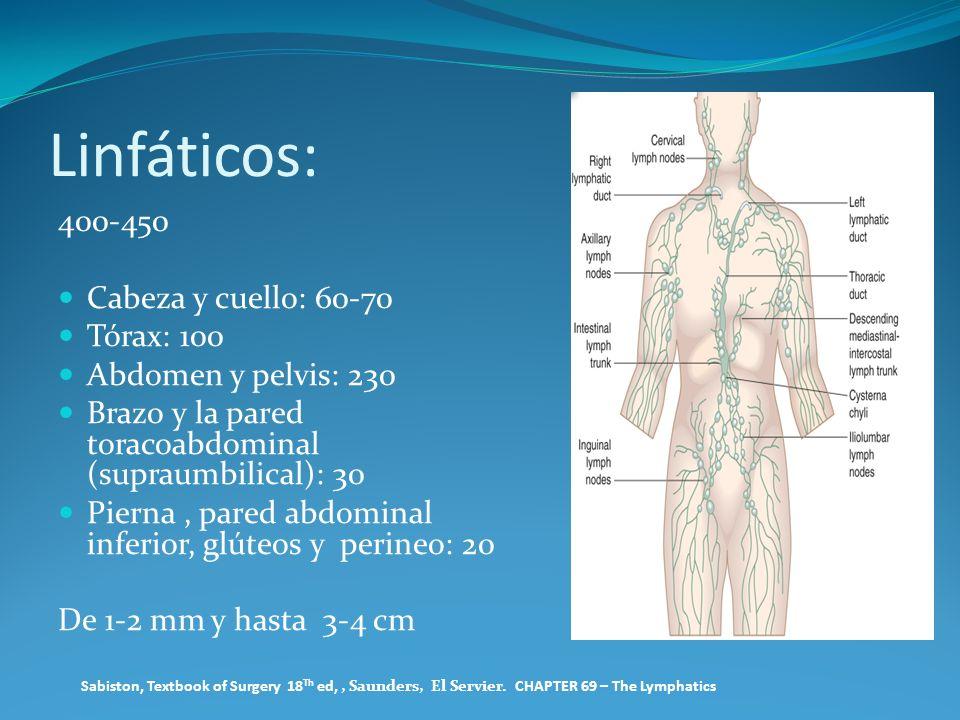 Linfáticos: 400-450 Cabeza y cuello: 60-70 Tórax: 100 Abdomen y pelvis: 230 Brazo y la pared toracoabdominal (supraumbilical): 30 Pierna, pared abdomi
