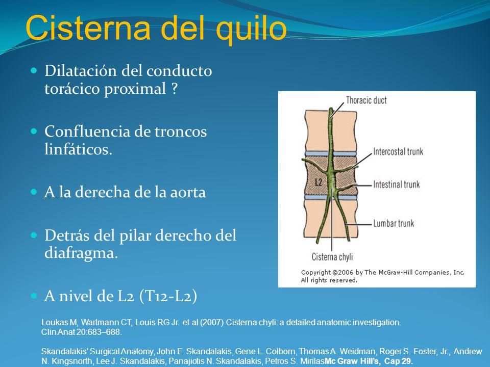 Cisterna del quilo Dilatación del conducto torácico proximal ? Confluencia de troncos linfáticos. A la derecha de la aorta Detrás del pilar derecho de