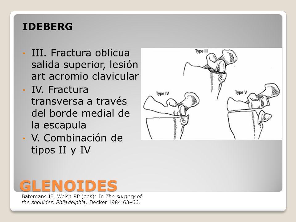 GLENOIDES IDEBERG III.Fractura oblicua salida superior, lesión art acromio clavicular IV.