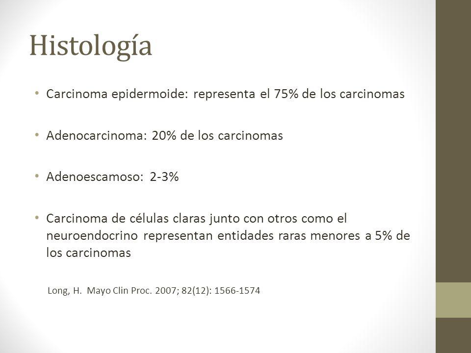 Histología Carcinoma epidermoide: representa el 75% de los carcinomas Adenocarcinoma: 20% de los carcinomas Adenoescamoso: 2-3% Carcinoma de células claras junto con otros como el neuroendocrino representan entidades raras menores a 5% de los carcinomas Long, H.