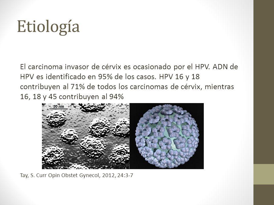 Etiología El carcinoma invasor de cérvix es ocasionado por el HPV.