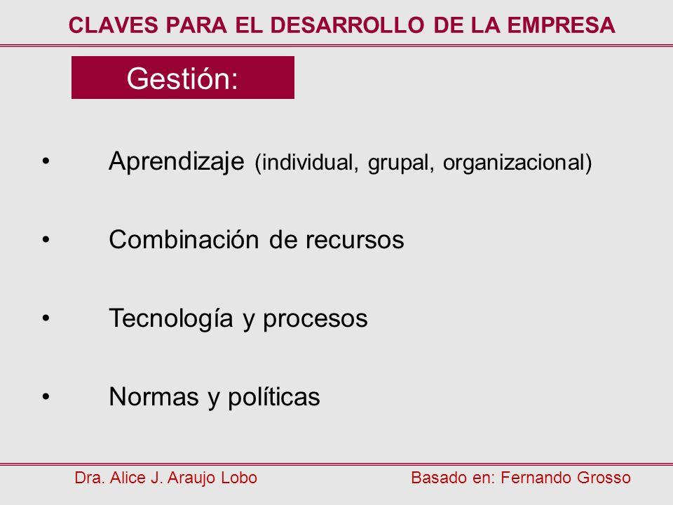 Gestión: Aprendizaje (individual, grupal, organizacional) Combinación de recursos Tecnología y procesos Normas y políticas CLAVES PARA EL DESARROLLO D
