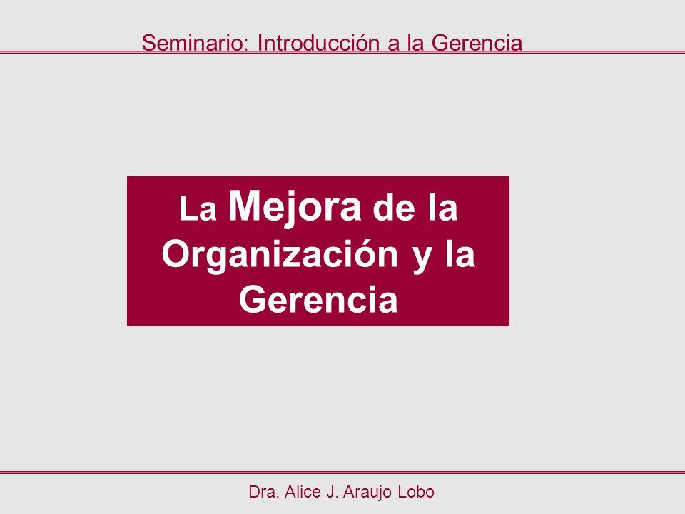 Dra. Alice J. Araujo Lobo La Mejora de la Organización y la Gerencia Seminario: Introducción a la Gerencia