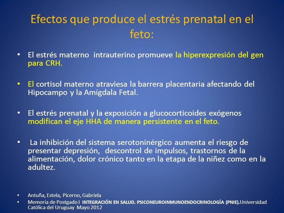 Efectos que produce el estrés prenatal en el feto: El estrés materno intrauterino promueve la hiperexpresión del gen para CRH. El cortisol materno atr