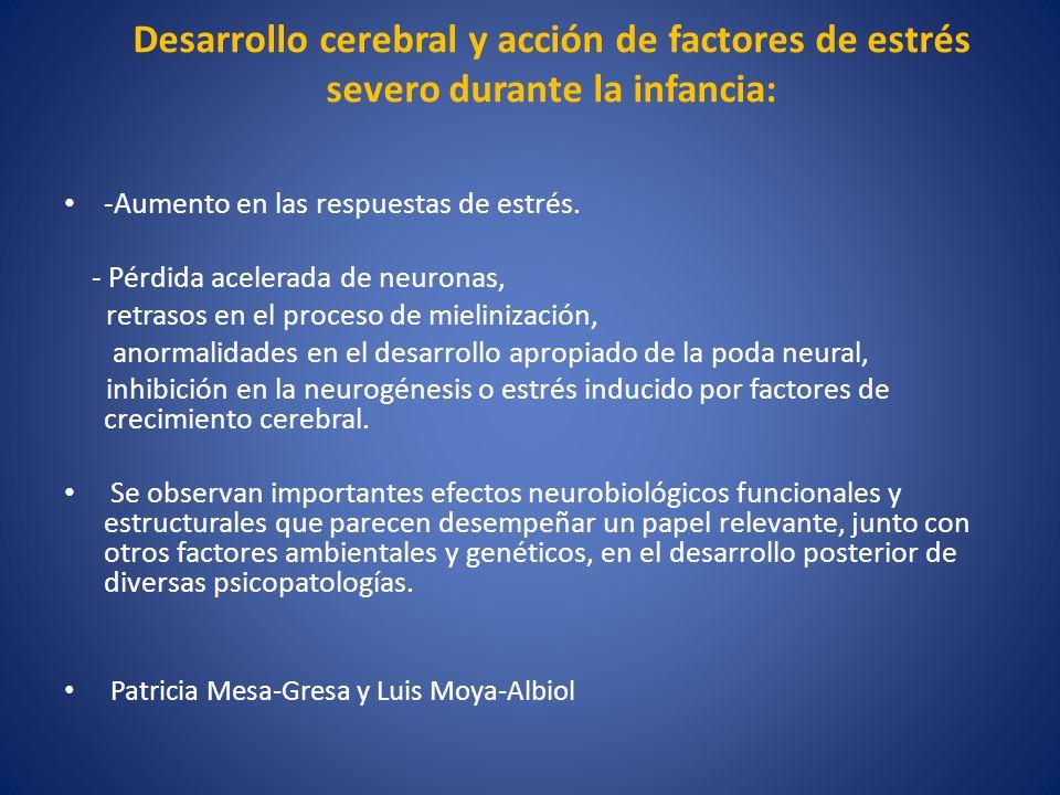 Desarrollo cerebral y acción de factores de estrés severo durante la infancia: -Aumento en las respuestas de estrés. - Pérdida acelerada de neuronas,