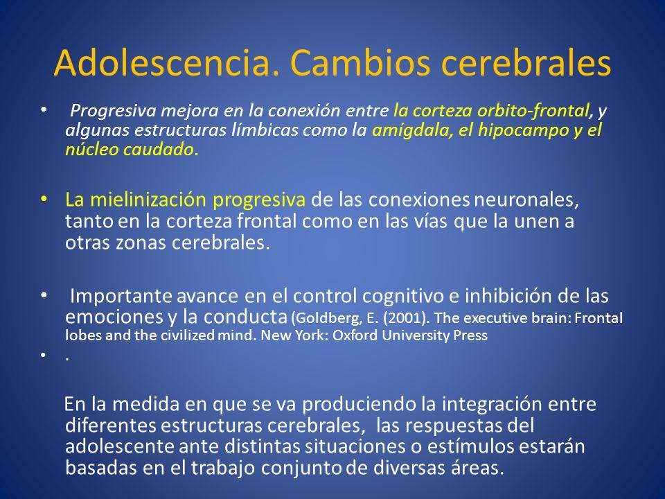 Adolescencia. Cambios cerebrales Progresiva mejora en la conexión entre la corteza orbito-frontal, y algunas estructuras límbicas como la amígdala, el