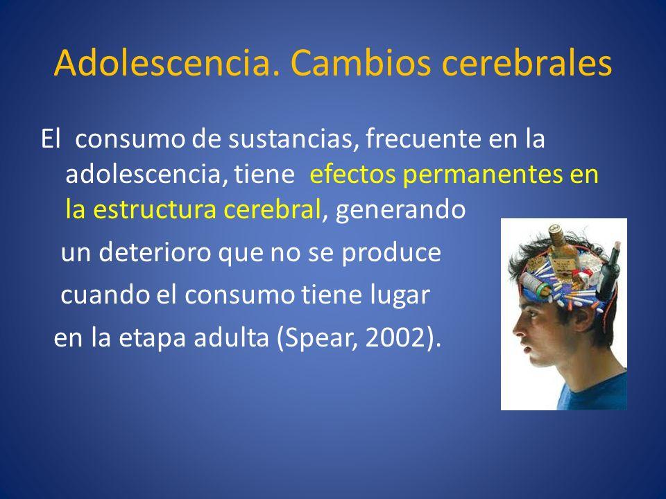 Adolescencia. Cambios cerebrales El consumo de sustancias, frecuente en la adolescencia, tiene efectos permanentes en la estructura cerebral, generand