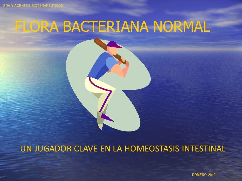 FLORA BACTERIANA NORMAL UN JUGADOR CLAVE EN LA HOMEOSTASIS INTESTINAL EDA Y AGENTES BIOTERAPEUTICOS ROMERO 2010