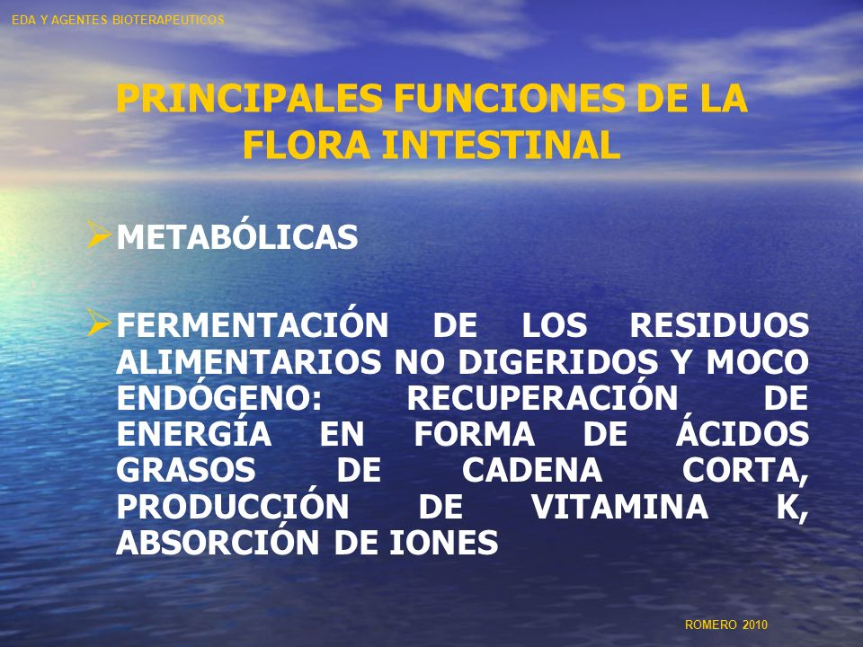 PRINCIPALES FUNCIONES DE LA FLORA INTESTINAL METABÓLICAS FERMENTACIÓN DE LOS RESIDUOS ALIMENTARIOS NO DIGERIDOS Y MOCO ENDÓGENO: RECUPERACIÓN DE ENERG
