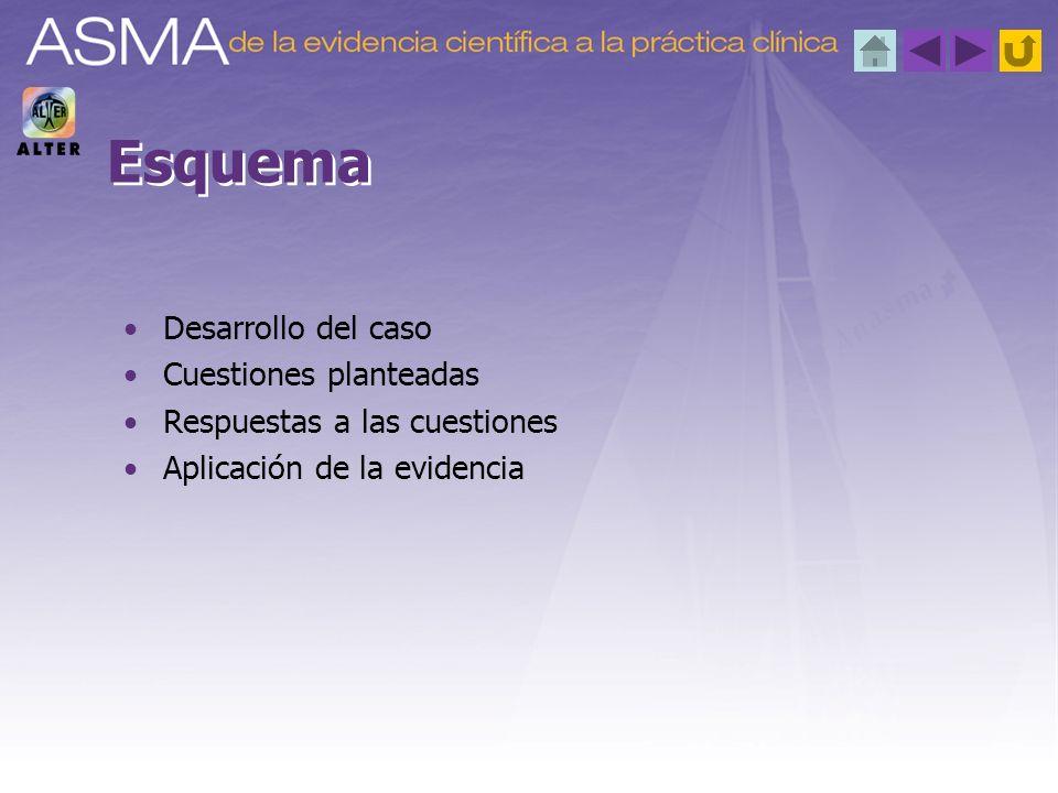 Esquema Desarrollo del caso Cuestiones planteadas Respuestas a las cuestiones Aplicación de la evidencia