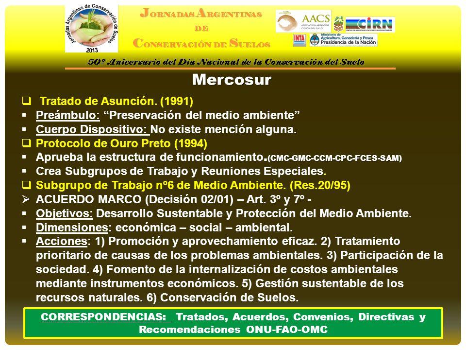 Mercosur Tratado de Asunción. (1991) Preámbulo: Preservación del medio ambiente Cuerpo Dispositivo: No existe mención alguna. Protocolo de Ouro Preto