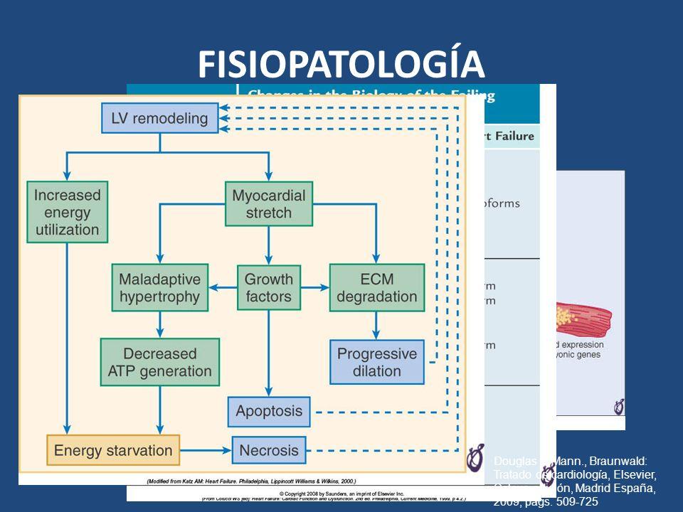 FISIOPATOLOGÍA Douglas L. Mann., Braunwald: Tratado de cardiología, Elsevier, Octava edición, Madrid España, 2009, págs. 509-725