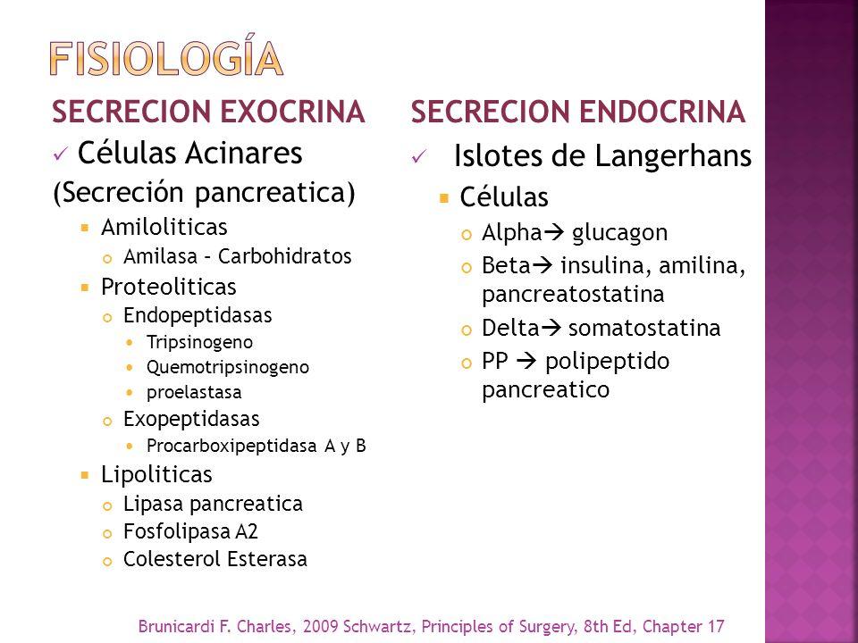 SECRECION EXOCRINA Células Acinares (Secreción pancreatica) Amiloliticas Amilasa – Carbohidratos Proteoliticas Endopeptidasas Tripsinogeno Quemotripsi