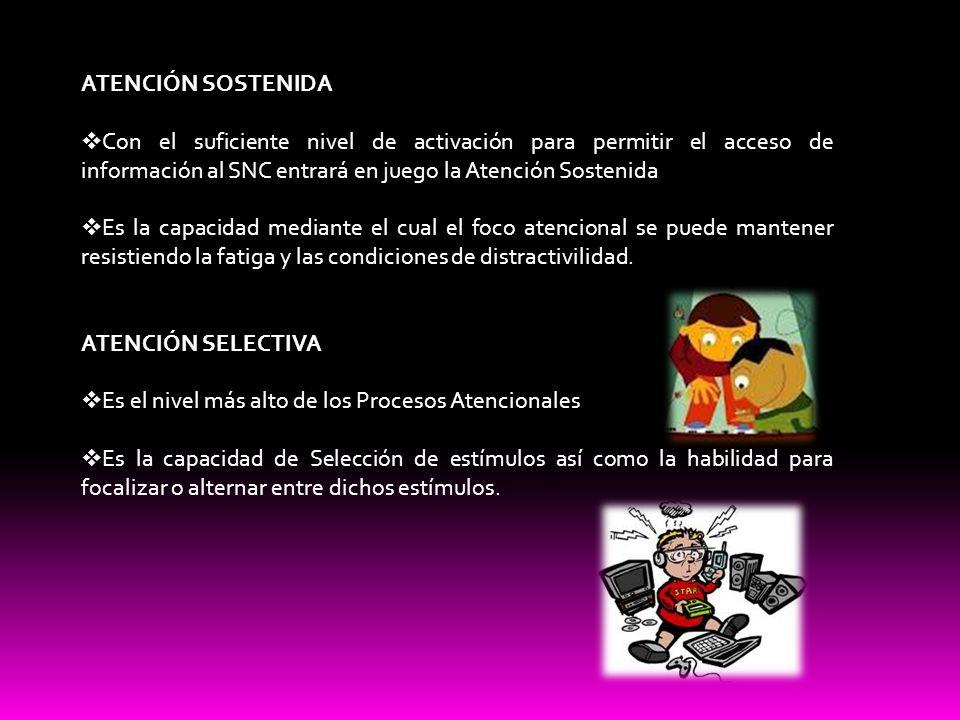 ATENCIÓN SOSTENIDA Con el suficiente nivel de activación para permitir el acceso de información al SNC entrará en juego la Atención Sostenida Es la ca