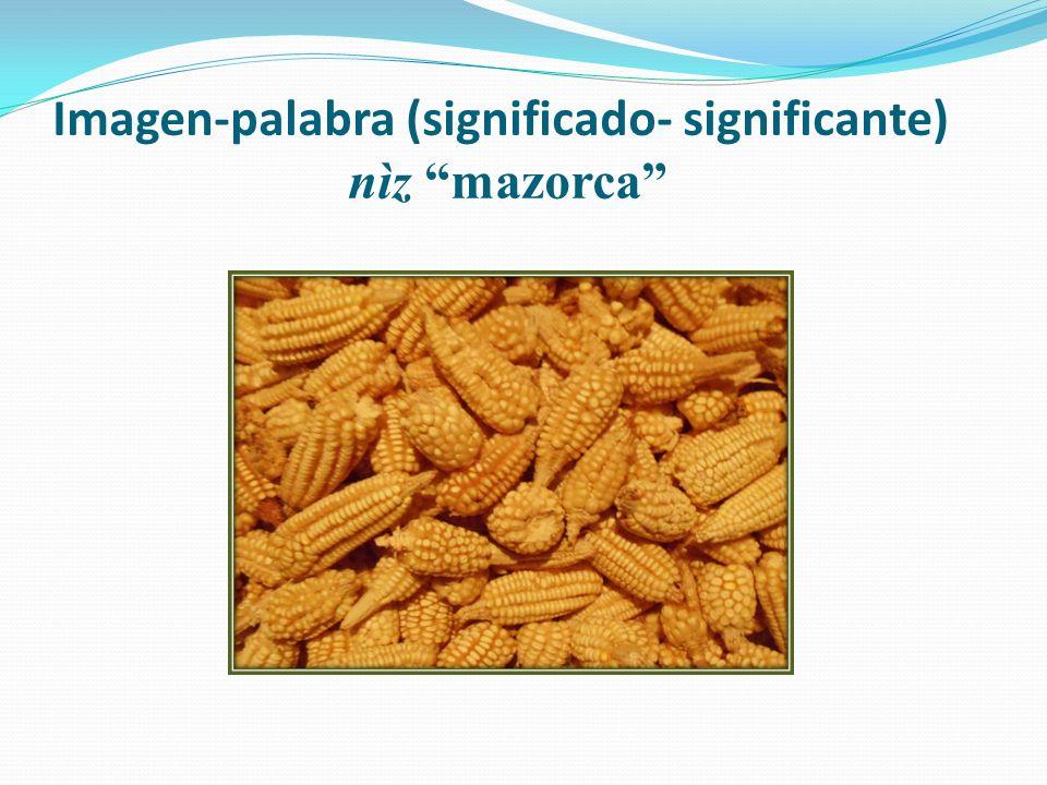 Imagen-palabra (significado- significante) nìz mazorca