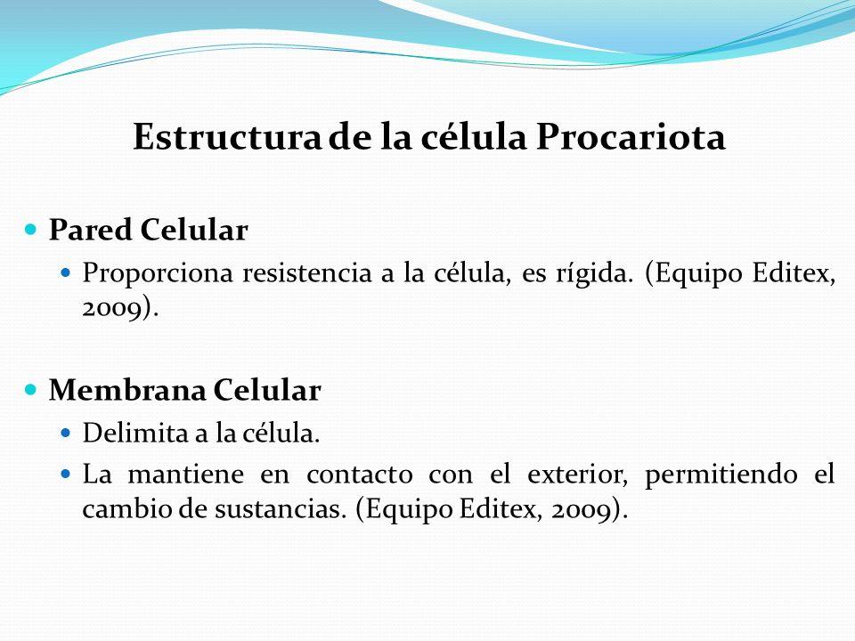 Estructura de la célula Procariota Pared Celular Proporciona resistencia a la célula, es rígida.